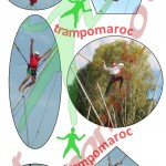 Bungy trampoline 7